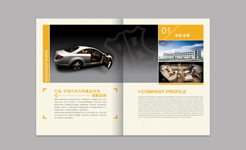 案例描述 : 福州东柏皮革画册策划设计